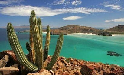 Buceo Baja California