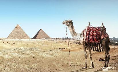 Viaje a Egipto ki travels